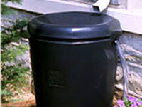 Rain Harvest Rain King Rain Barrel